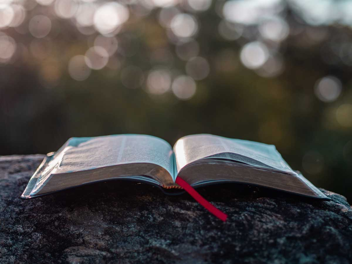 warrenton-declaration-biblical-ethics-medical-mandates-authority